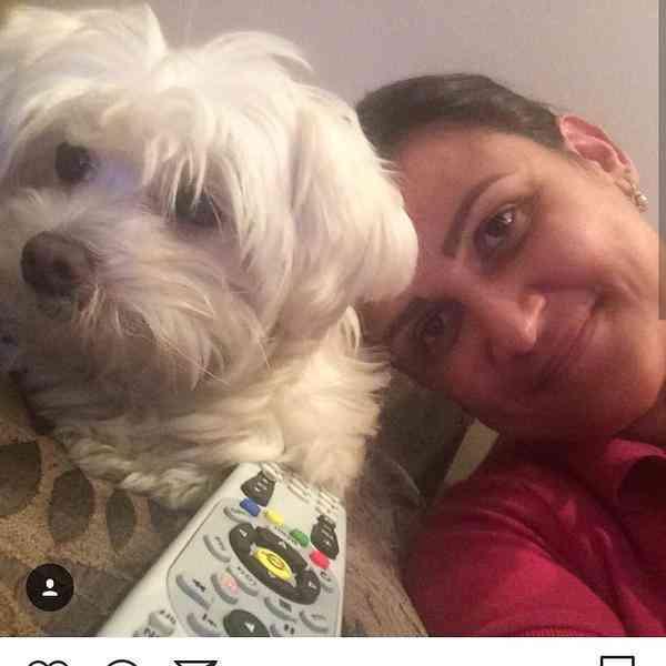 Cachorrinha Desaparecida em Contagem