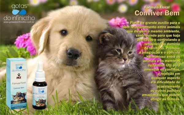 Florais No Tratamento de Animais