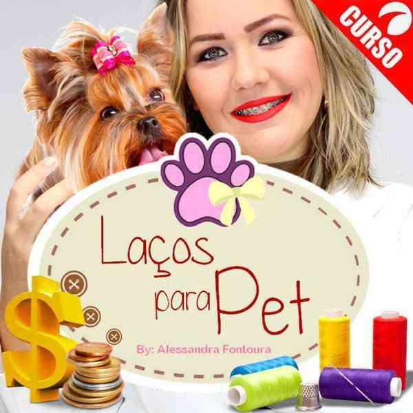 Curso Laço Para Pet