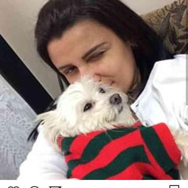 Cachorrinha Desaparecida em Contagem Dia 16/10/2018